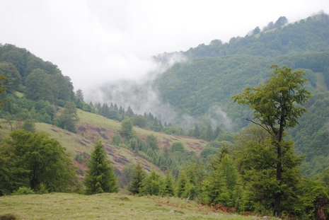 Karpackie krajobrazy